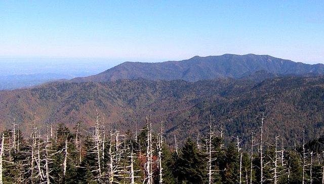 East Looking View Of Clingmans Dome