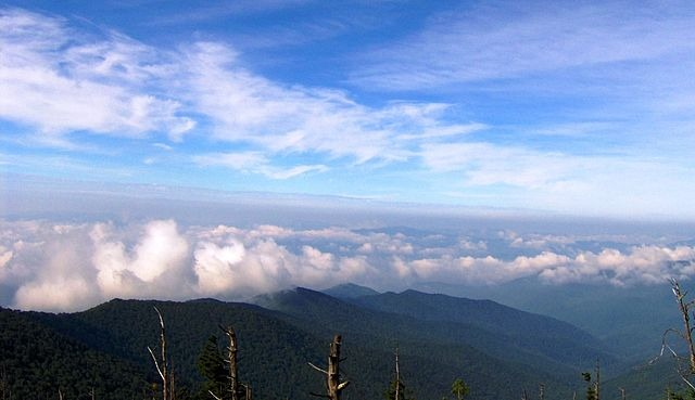 South Looking View From Clingmans Dome